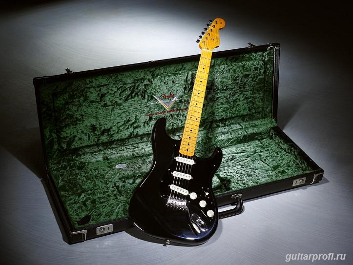 Гитара David Gilmour Signature Black Strat
