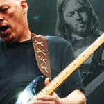Дэвид Гилмор и его гитары