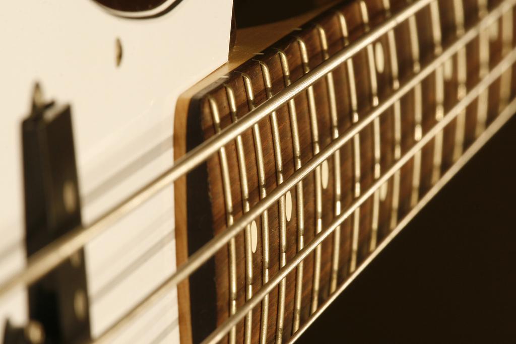 bass-gitara
