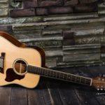 Как настроить двенадцатиструнную гитару
